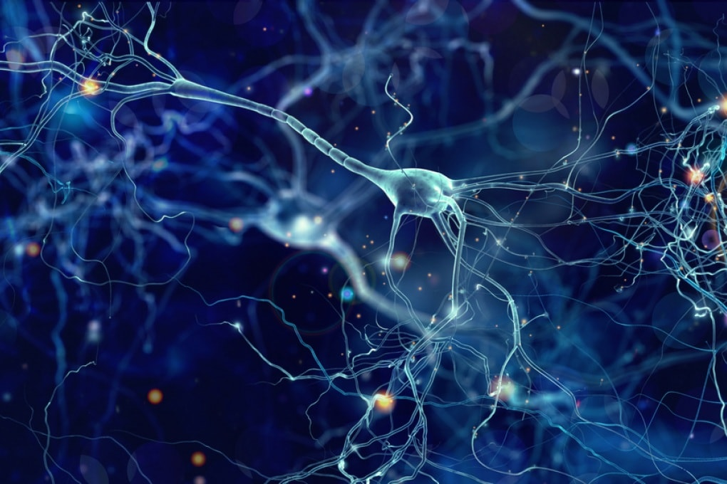 Alzheimer: farmaci antiretrovirali contro i neuroni trasformisti?