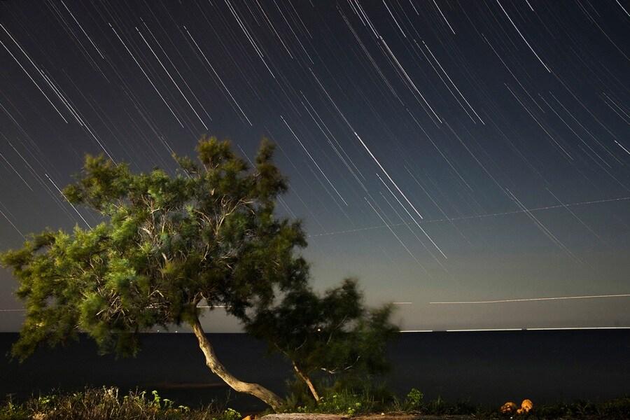 star-trail_anna-maria-noto