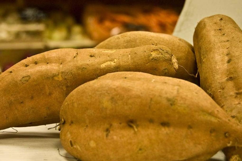 La patata è adatta a crescere su Marte