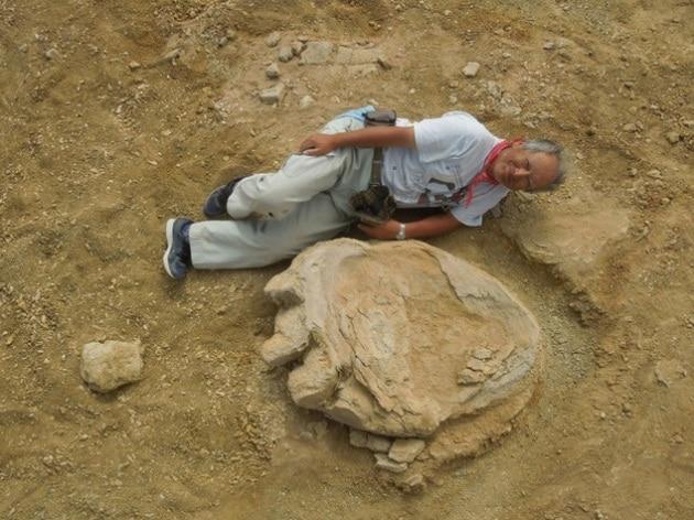 Scoperta una delle impronte di dinosauro più grandi di sempre