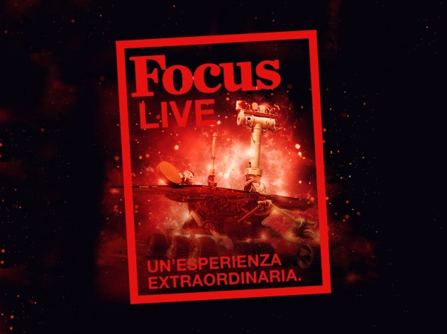 focus-live-web0134