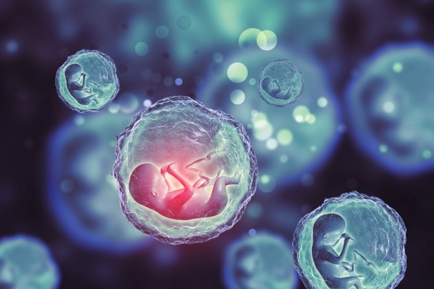 Le cellule immunitarie