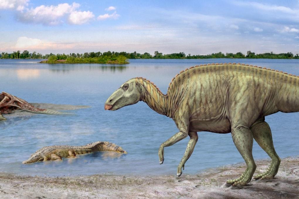 I dinosauri erbivori non erano del tutto vegetariani