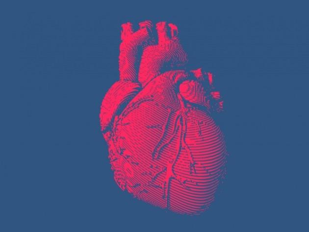 Arriveremo a rigenerare un cuore umano?