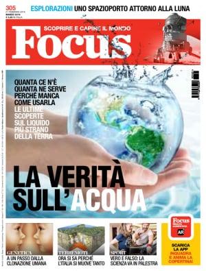 Focus 305