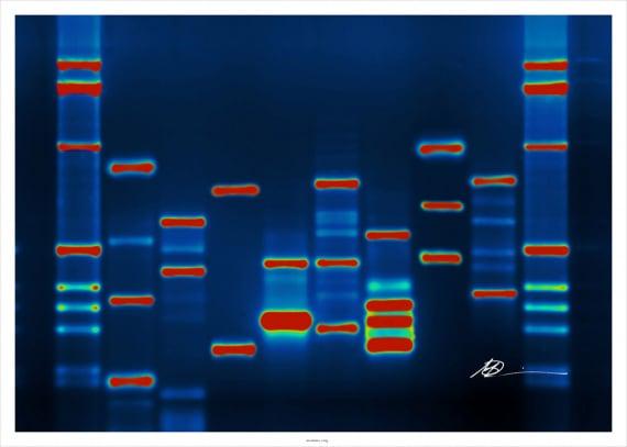 sicurezza informatica, hacking genetico, malware genetico