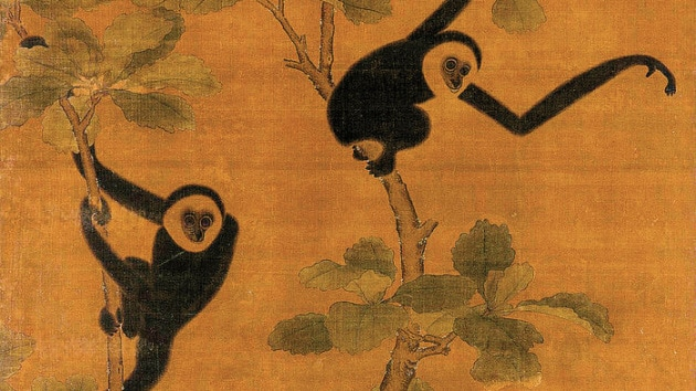 chinese-gibbons