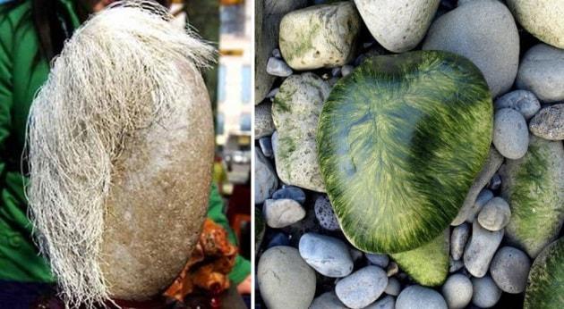 Faccia di pietra e i suoi capelli