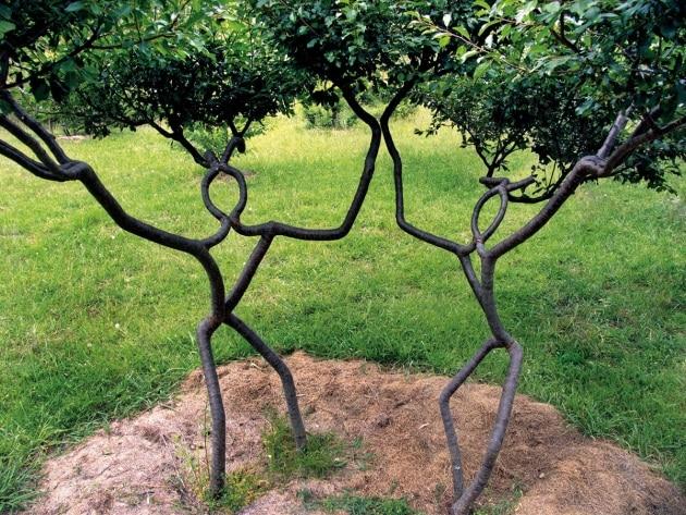 2011_08_amazing_tree_art-004