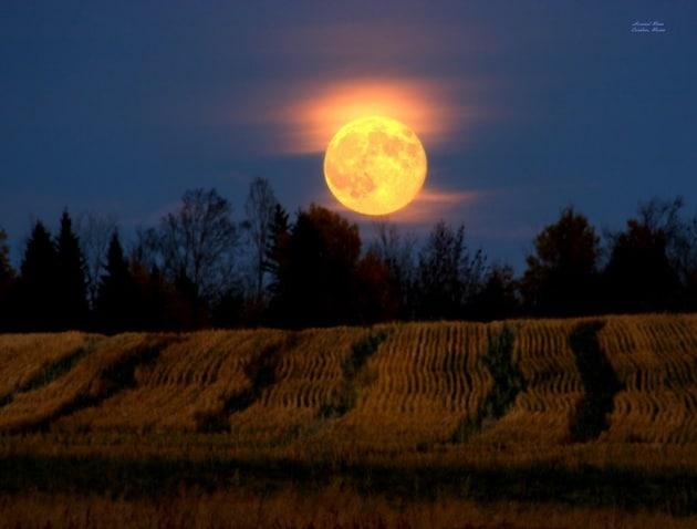 Precede Sun Nei Calendario Inglesi.Stregati Dalla Luna Leggende Incredibili Sul Nostro