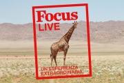 focus-live-web05