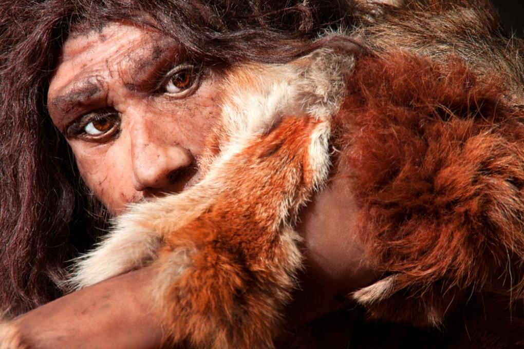Il cervello dei Neanderthal cresceva più lentamente del nostro