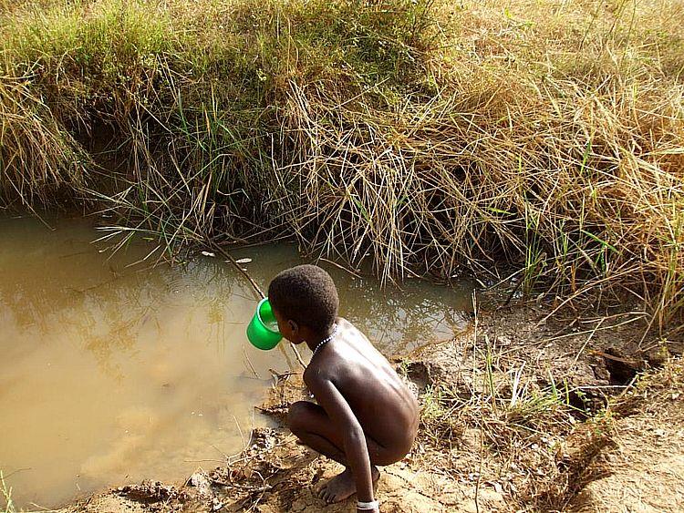 Due miliardi di persone bevono acqua contaminata for Cucinare per 80 persone