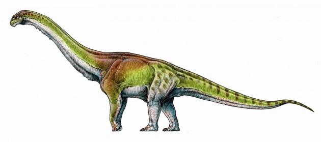 Il più gigantesco dei dinosauri