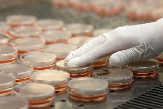 Le puzzette contaminano le sale operatorie?