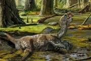 dragonepiumato