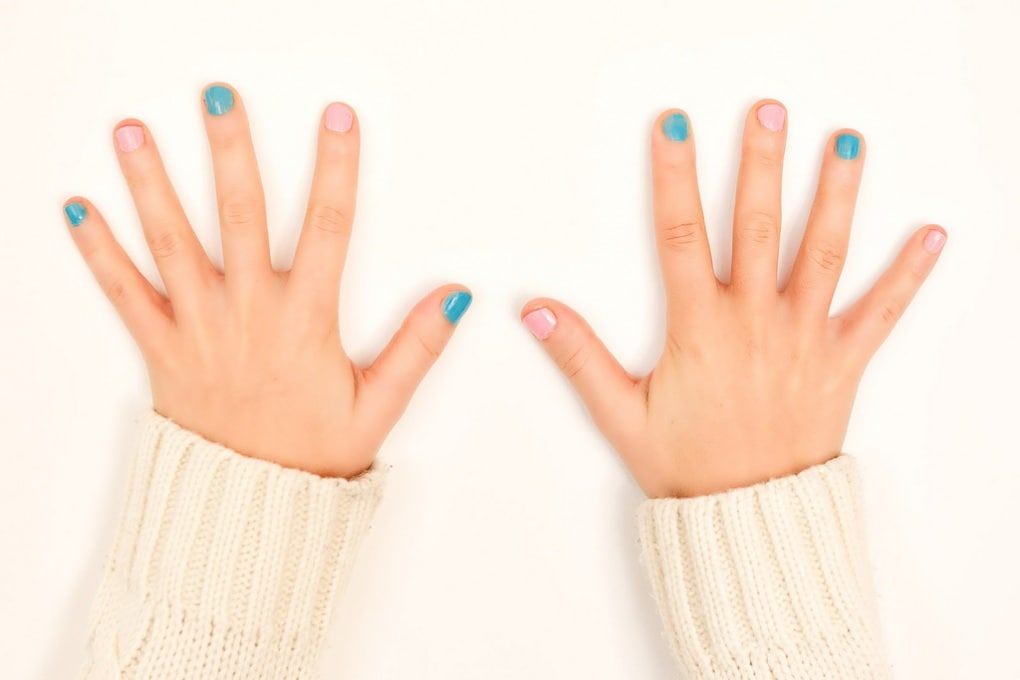 Perché abbiamo mani con cinque dita?