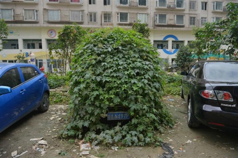 14-btw-131018-china-car-01-def