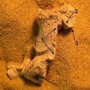 sepolture, medioevo, credenze medievali, maledizioni, peste, esorcismi