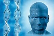 È possibile ricostruire il nostro volto partendo dal DNA?
