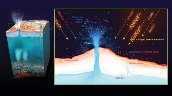 Sistema Solare, Europa, Giove, ricerca della vita, esobiologia, geologia, fisica, astronomia