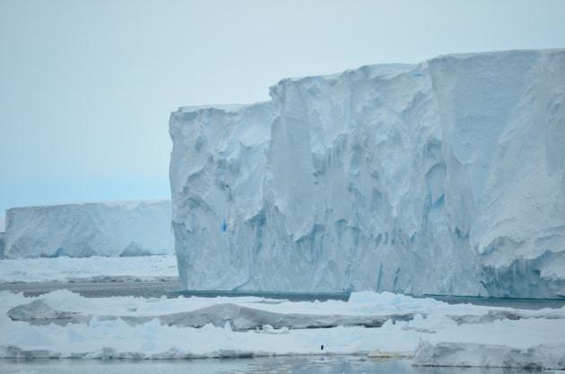 antartide-lingue-di-ghiaccio