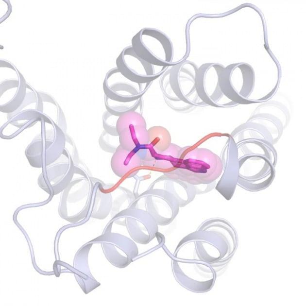Una molecola di LSD colta sul fatto