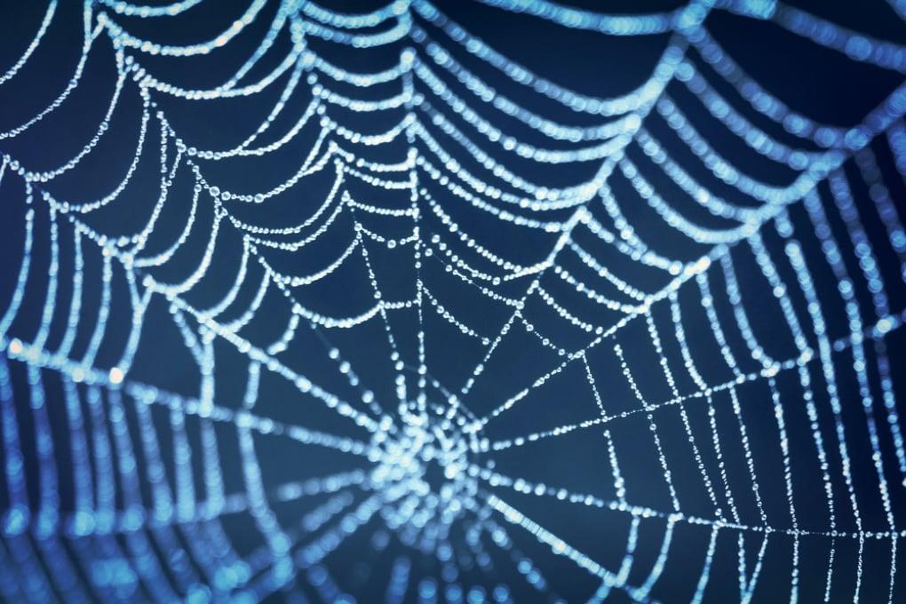 Creata la ragnatela super resistente
