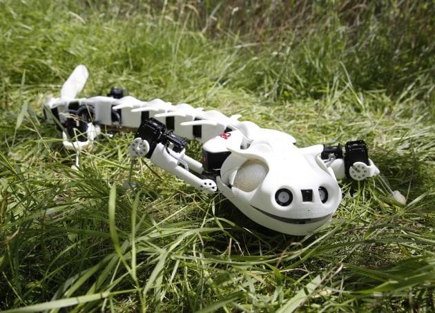 6 robot ispirati agli animali
