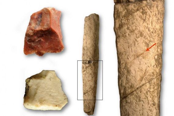 Homo floresiensis, Homo erectus, isola di Flores, isola di Luzon, Filippine, Homo sapiens