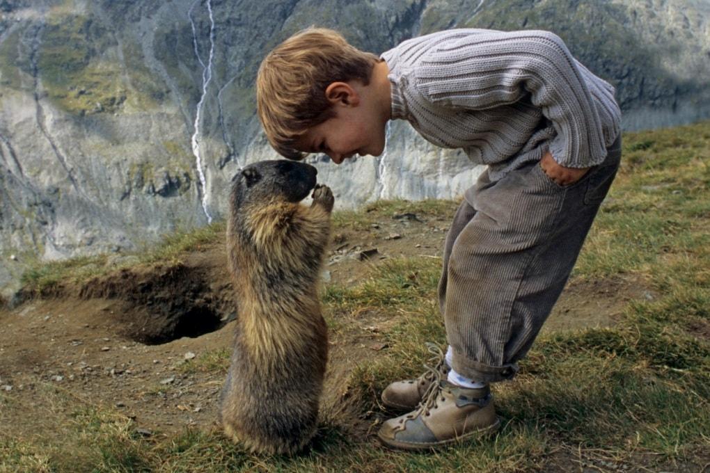 Che cos'è il Giorno della marmotta