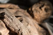 Il vaiolo ha solo pochi secoli di storia?