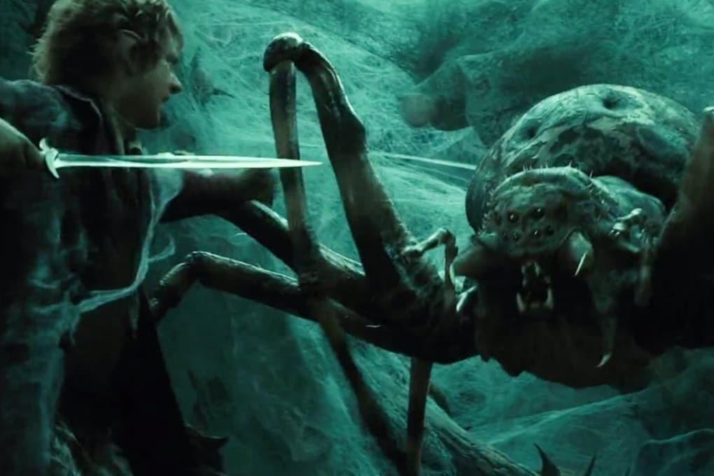 Sette nuove specie di ragni