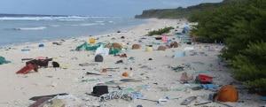 ambiente marino, biodiversità, oceani, biodiversità marina, pesca, alimentazione, inquinamento