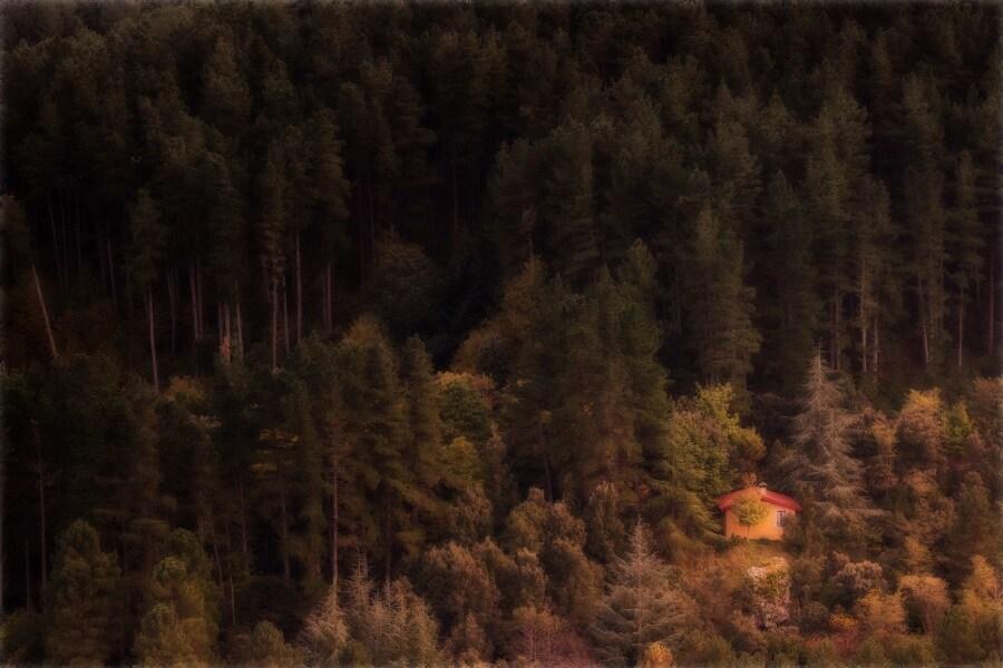 autunno-in-barbagia-daniele-murru