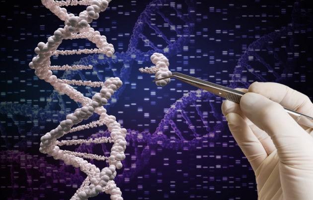 evoCas9: arma di precisione per l'editing del genoma