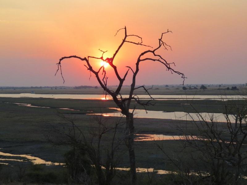 botswana-ingrid-choc