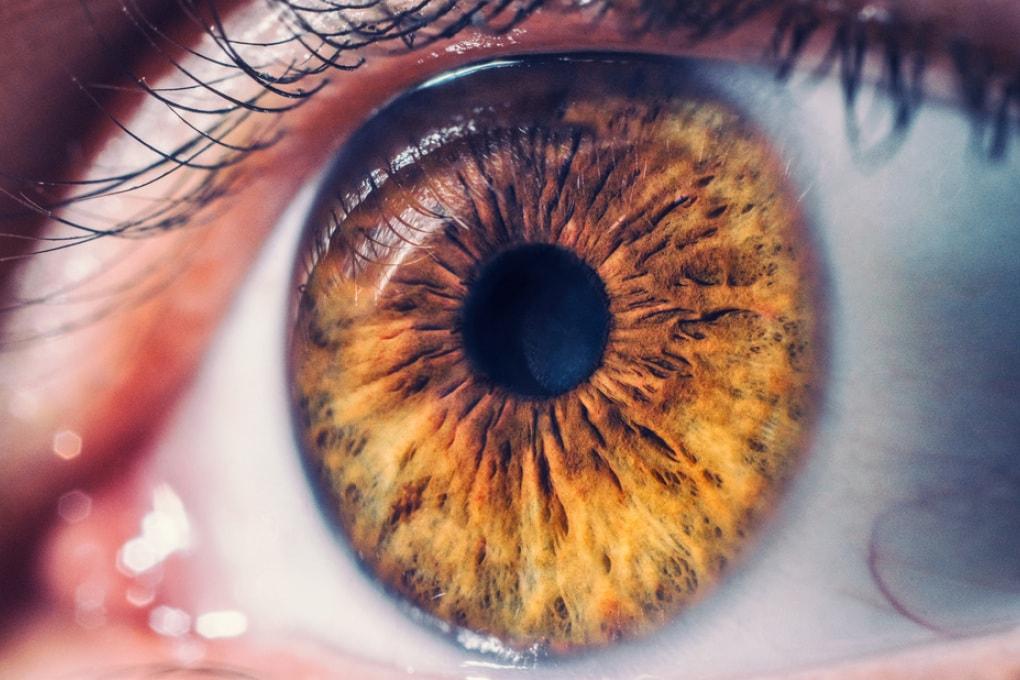Retina artificiale: le nuove frontiere della medicina
