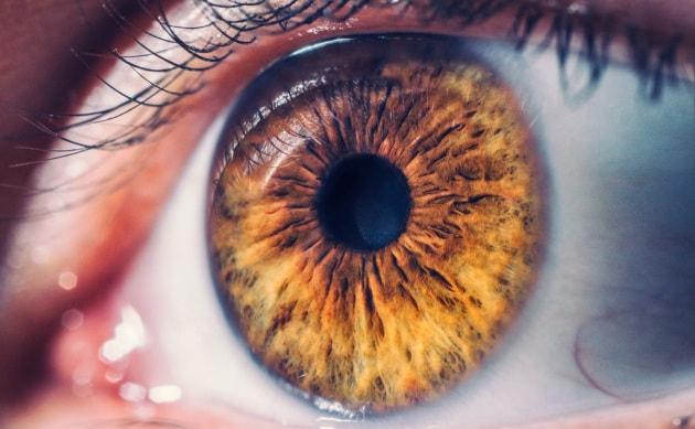 retina-occhio