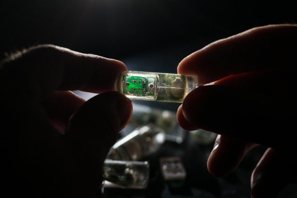 Uno strumento diagnostico ingoiabile fatto di chip e batteri