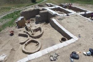 vite comune, vino, fermentazione del vino, produzione di vino, scavi archeologici, neolitico