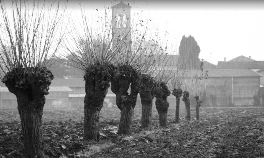 campolonghetto-mauro-sepulcri