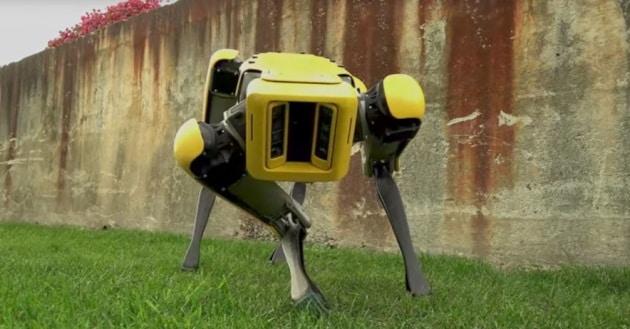 Attenti al cane (di Boston Dynamics)