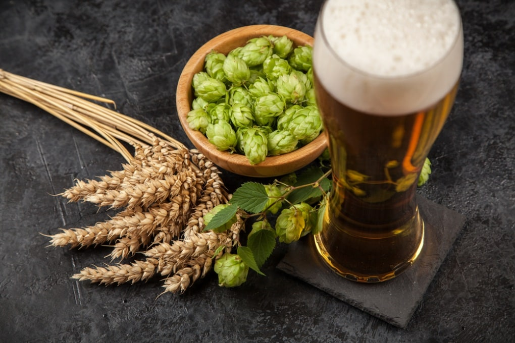 La birra senza luppolo, al sentore di luppolo