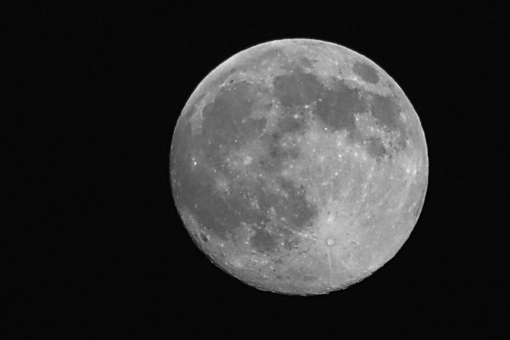 C'era vita sulla Luna?
