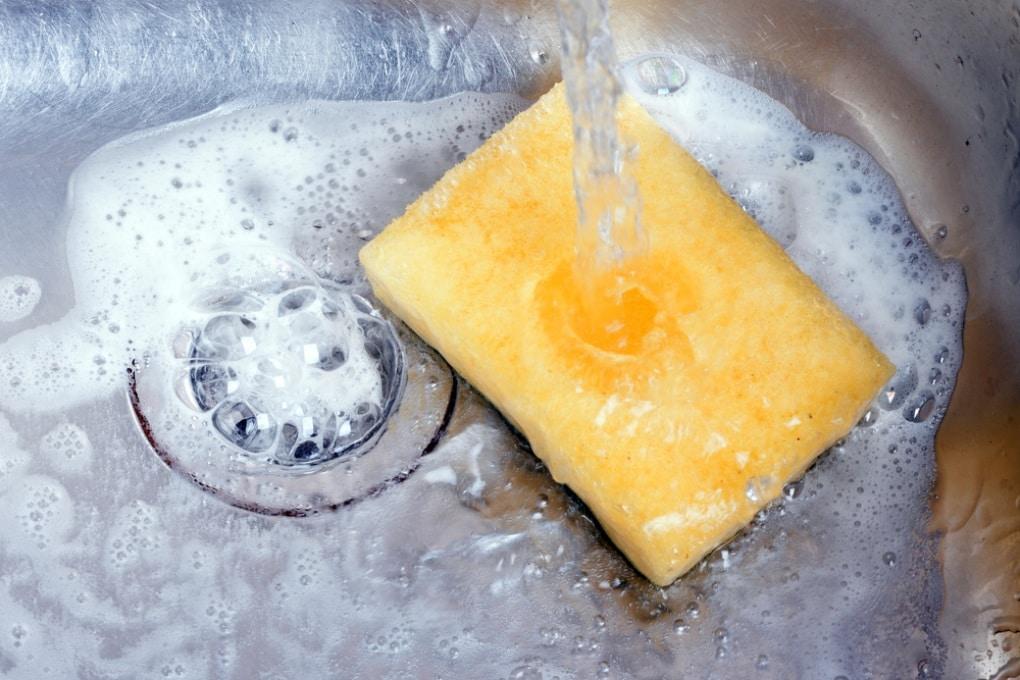 La spugna da cucina: peggio, solo le feci