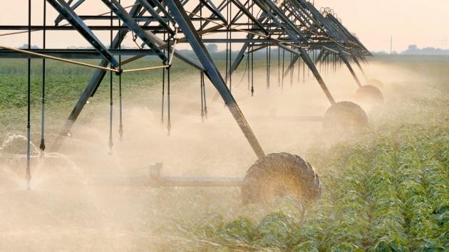Alimentazione: perché bisogna riorganizzare l'agricoltura a livello mondiale
