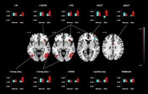 narcisismo, risonanza magnetica, cervello