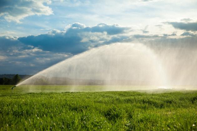 2050: scarsità d'acqua per 5 miliardi di persone