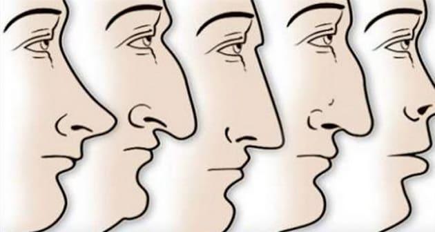 La forma del naso è casuale? No, forse dipende dal clima